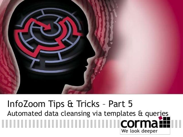 InfoZoom Tips & Tricks – Part 5 Automated data cleansing via templates & queries