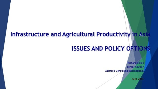 Infrastructure and Agricultural Productivity in Asia ISSUES AND POLICY OPTIONS Richard Vokes Senior Advisor Agrifood Consu...