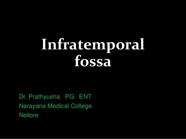 Infratemporal fossa Dr. Prathyusha PG ENT Narayana Medical College Nellore