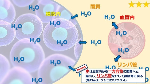 リンパ管 間質 血管内 細胞内 H2O H2O H2OH2O H2O H2O H2O H2O H2O H2O H2O H2O H2O H2O H2O H2O H2OH2O 水は血管内から一方向性に間質へと 漏出し, リンパ管を介して静脈角に戻る...