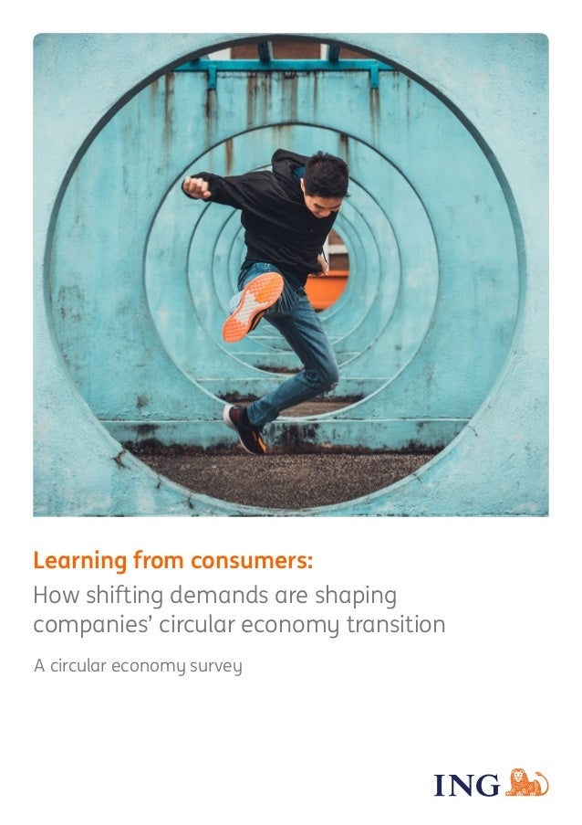 Learning from consumers: How shifting demands are shaping companies' circular economy transition A circular economy survey