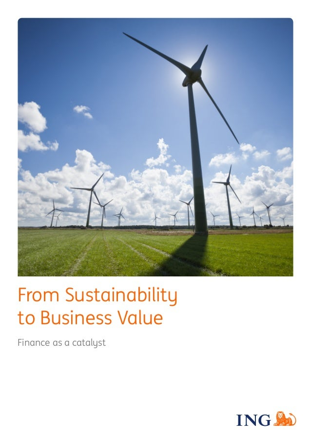From Sustainability to Business Value Finance as a catalyst