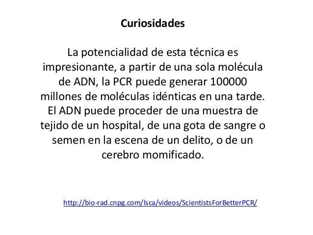 SECUENCIACIÓN DE ADN  http://www.ucm.es/info/genetica/grupod/Estruadn/estruadn.htm#Secuenciahttp://www.iib.uam.es/servicio...