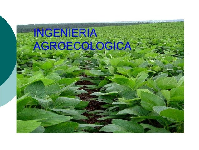 INGENIERIA AGROECOLOGICA
