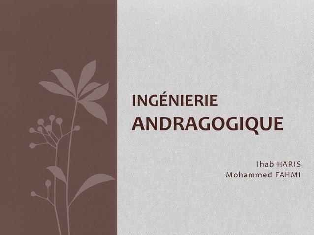 Ihab HARIS Mohammed FAHMI INGÉNIERIE ANDRAGOGIQUE