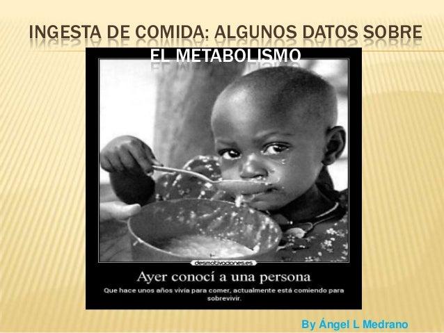 INGESTA DE COMIDA: ALGUNOS DATOS SOBRE EL METABOLISMO  By Ángel L Medrano