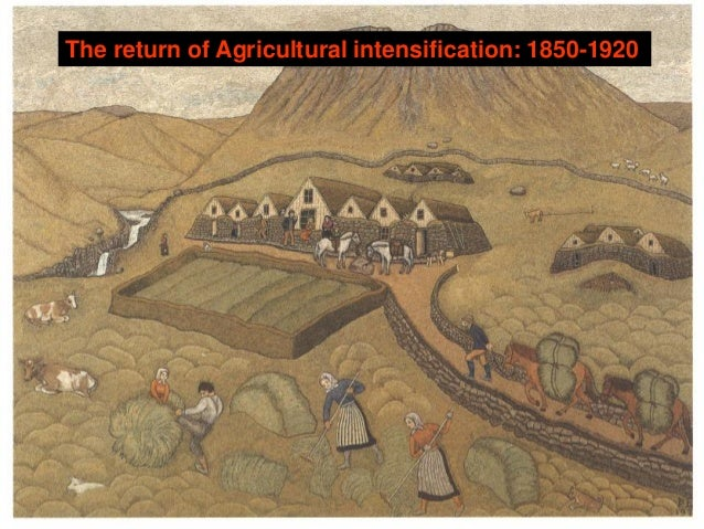 economic growth in the late 19th century Growth of government intervention  the development of agriculture and granting financial support to companies building the railroad system in the late 19th century, the government played little role in business affairs  additionally, in the 20th century, the federal government's role in the us economy has expanded to include major.