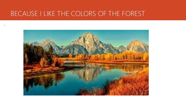 """BECAUSE I LIKE THE COLORS OF THE FOREST """""""