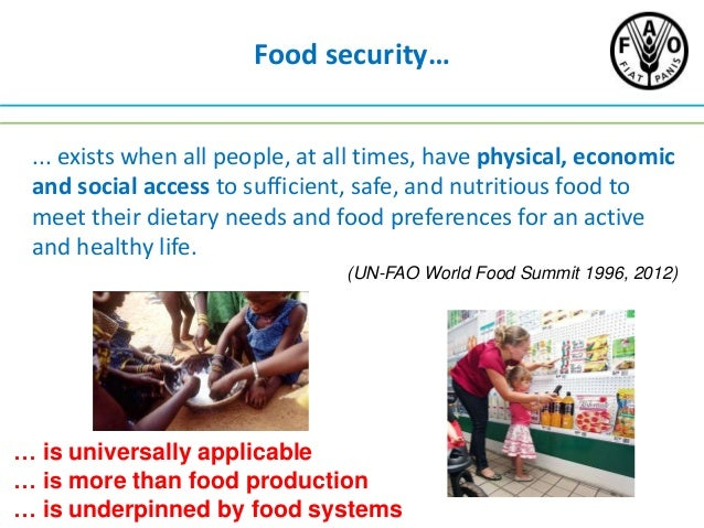 Food systems, food security and environmental change Slide 2