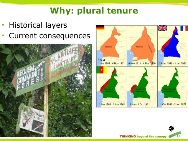 ... canopy; 3. Why plural ...  sc 1 st  SlideShare & Integrating customary and legal systems for forest product governanceu2026