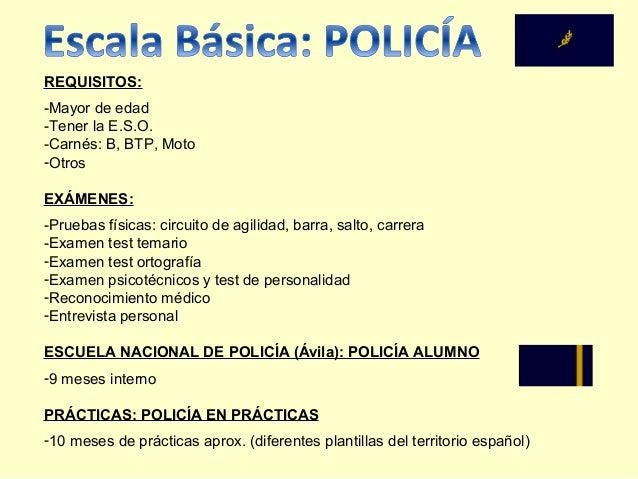 Circuito Agilidad Policia Nacional : Ingreso cuerpo nacional de policía