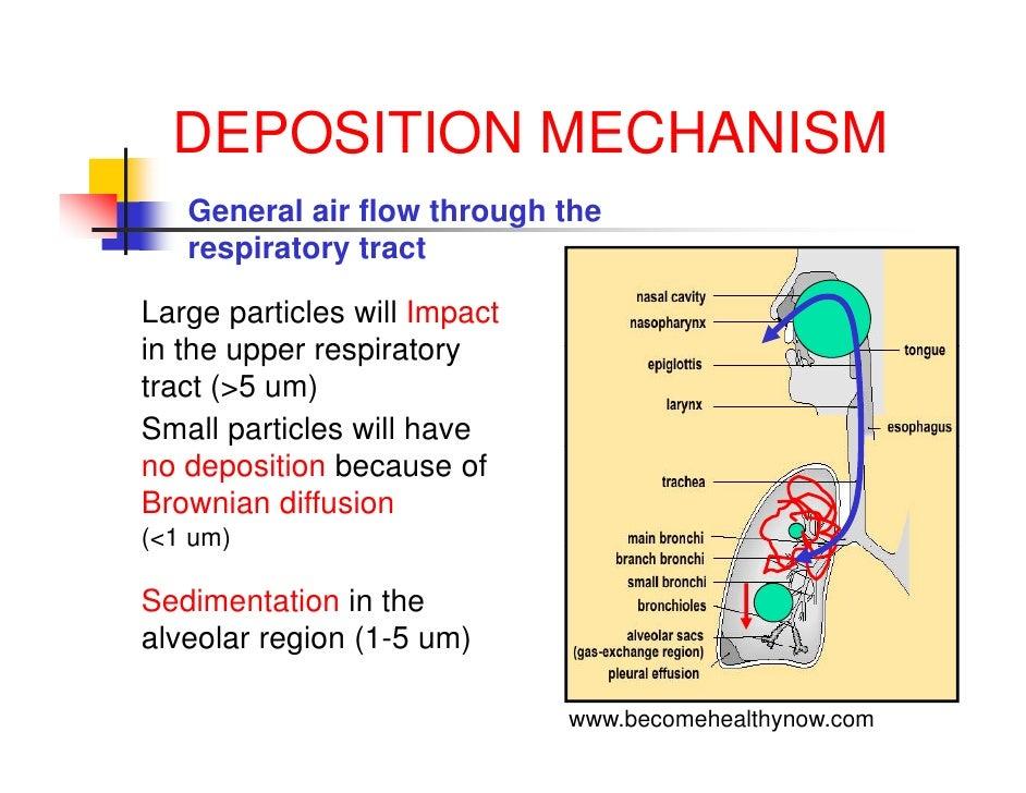 Lab 6 diffusion