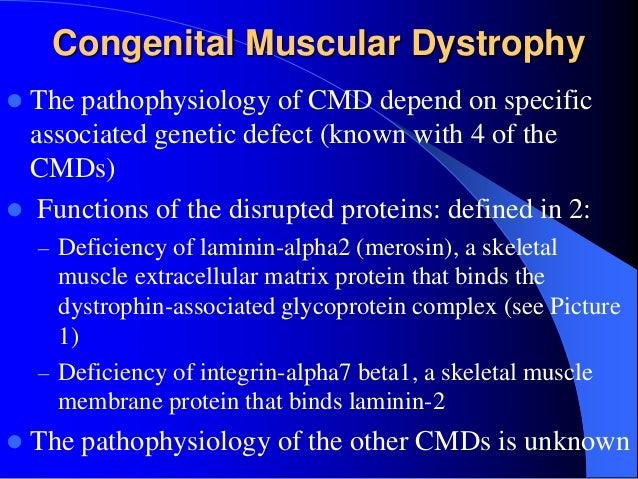 Inherited disorders of skeletal muscle
