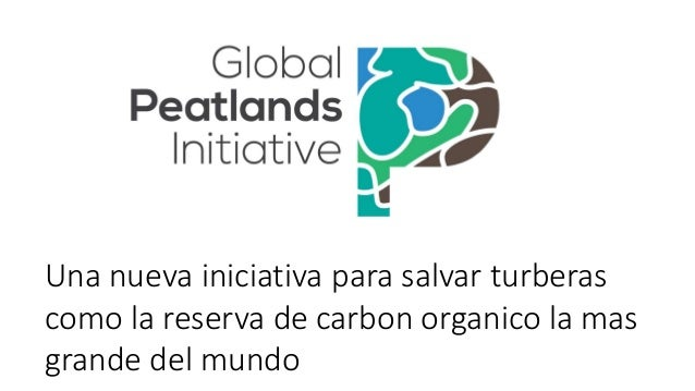 Una nueva iniciativa para salvar turberas como la reserva de carbon organico la mas grande del mundo