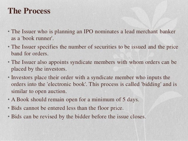 What basically happens in an initial public offering ipo