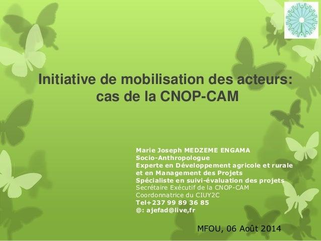 Initiative de mobilisation des acteurs cas de la Concertation nationale des Organisations Paysannes du Cameroun