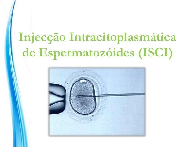 Injecção Intracitoplasmática de Espermatozóides (ISCI)