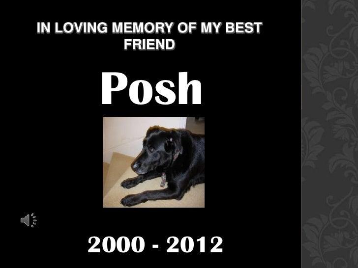 IN LOVING MEMORY OF MY BEST           FRIEND       Posh      2000 - 2012