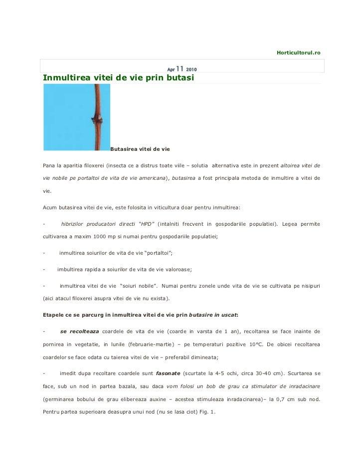 Horticultorul.ro                                                    Apr   11   2010Inmultirea vitei de vie prin butasi    ...