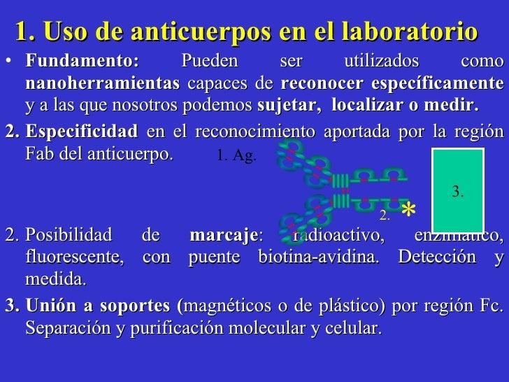 1. Uso de anticuerpos en el laboratorio   <ul><li>Fundamento:  Pueden ser utilizados como  nanoherramientas  capaces de  r...
