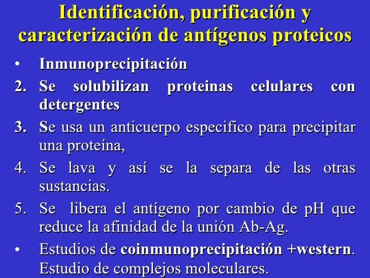 Identificación, purificación y caracterización de antígenos proteicos <ul><li>Inmunoprecipitación  </li></ul><ul><li>Se so...