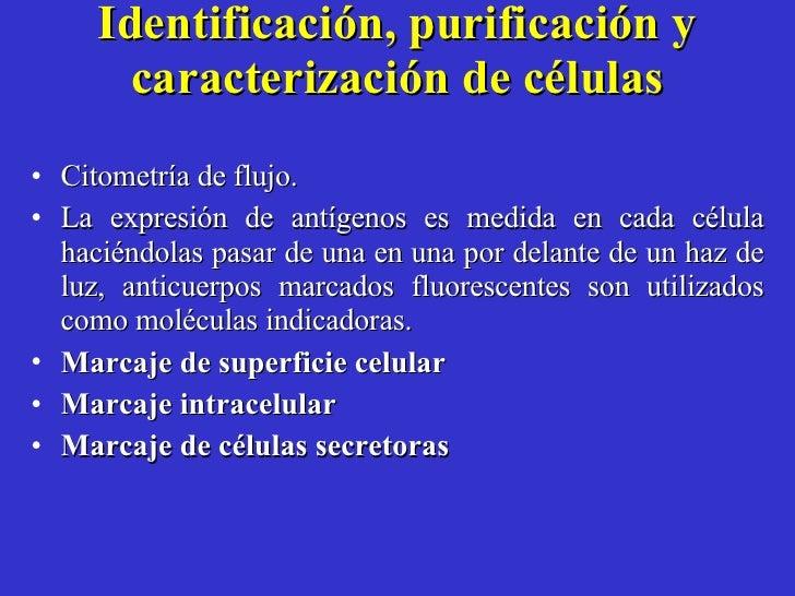 Identificación, purificación y caracterización de células <ul><li>Citometría de flujo.  </li></ul><ul><li>La expresión de ...
