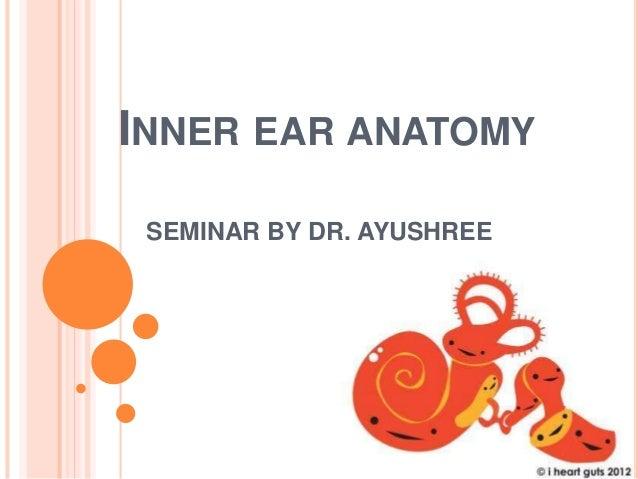 INNER EAR ANATOMY SEMINAR BY DR. AYUSHREE