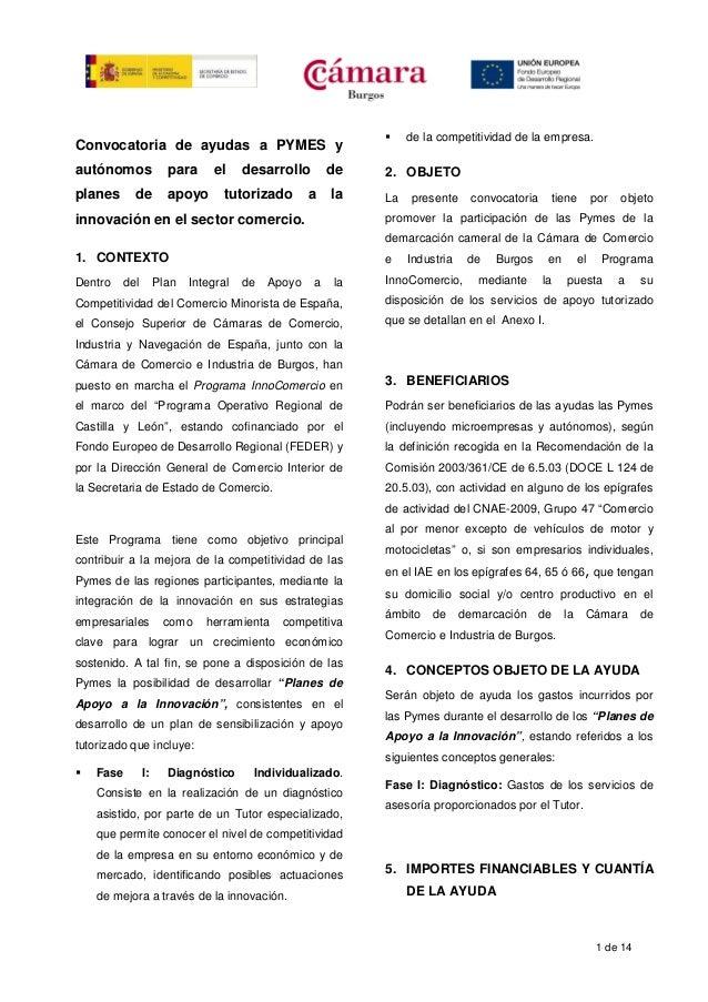 1 de 14 Convocatoria de ayudas a PYMES y autónomos para el desarrollo de planes de apoyo tutorizado a la innovación en el ...