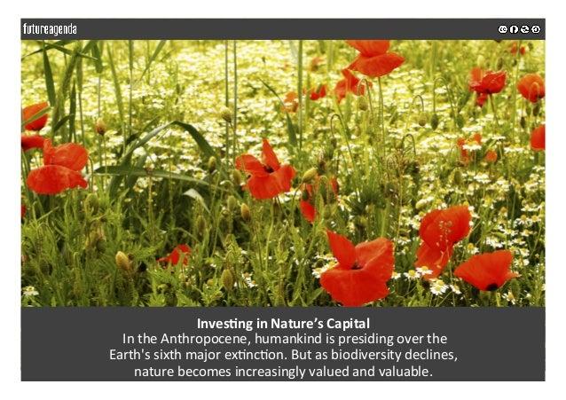 Inves&nginNature'sCapital IntheAnthropocene,humankindispresidingoverthe Earth'ssixthmajorex5nc5on.Butas...