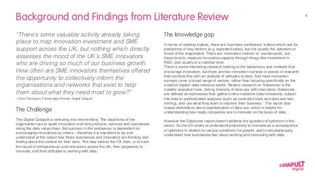 optimism literature review