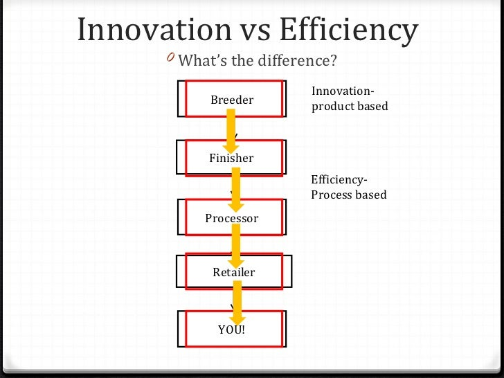 Innovation And Efficiency In The Beef Industry