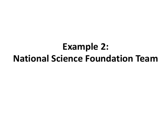 Example 2: National Science Foundation Team