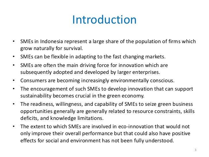 Innovation of small medium enterprises for sustainability Slide 3