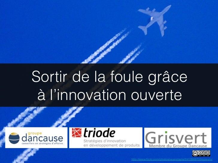 Sortir de la foule grâce à l'innovation ouverte               http://www.flickr.com/photos/seanstayte/2412869735/sizes/o/