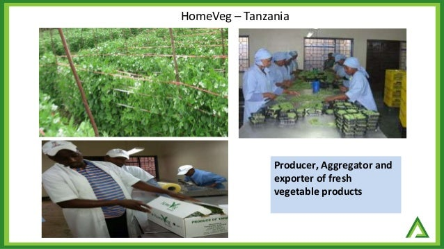 A case of exotic foods company and proposition for more products inclusion