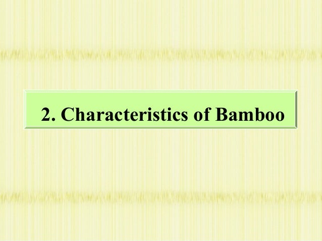 Innovative Technologies Of Bamboo Processing In China