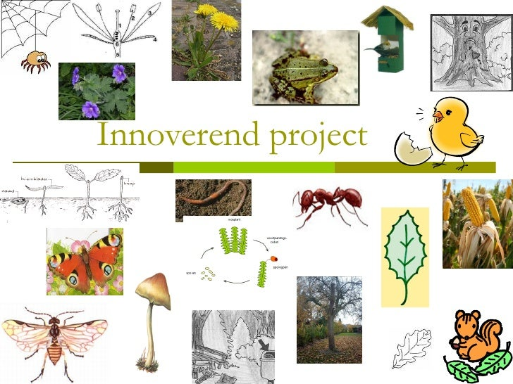 Innoverend project