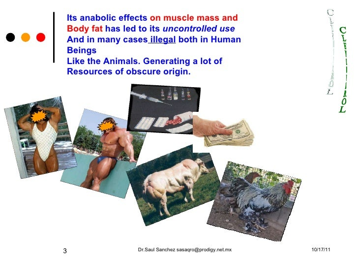 european anabolic systems