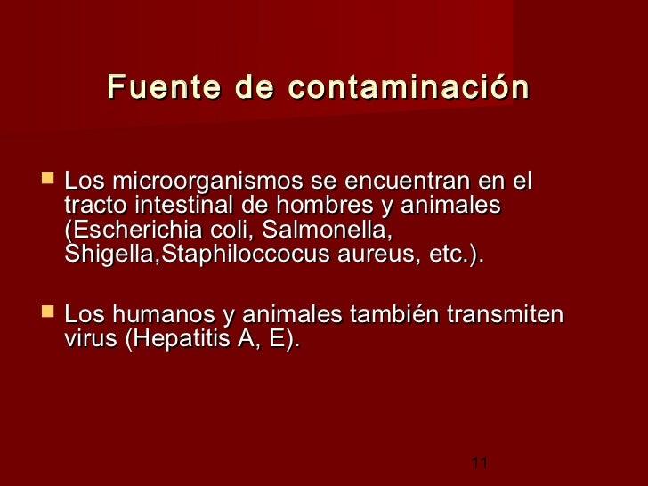 Inocuidad de los alimentos y comercio - Fuentes de contaminacion de los alimentos ...