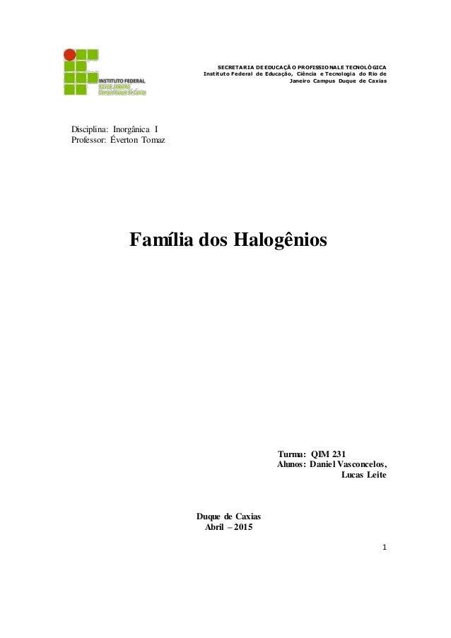1 SECRETARIA DE EDUCAÇÃO PROFISSIONALE TECNOLÓGICA Instituto Federal de Educação, Ciência e Tecnologia do Rio de Janeiro C...
