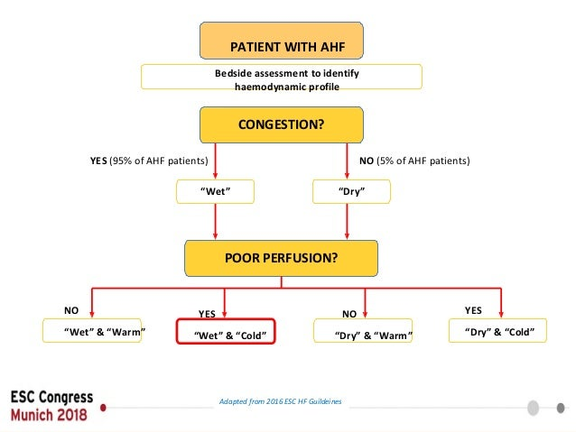 PATIENT WITH AHF Bedside assessment to identify haemodynamic profile CONGESTION? YES (95% of AHF patients) NO (5% of AHF p...