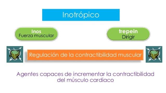 Fármacos Inotrópicos Slide 3