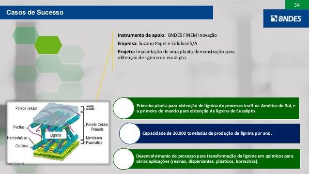 34 Primeira planta para obtenção de lignina do processo kraft na América do Sul, e a primeira do mundo para obtenção de li...