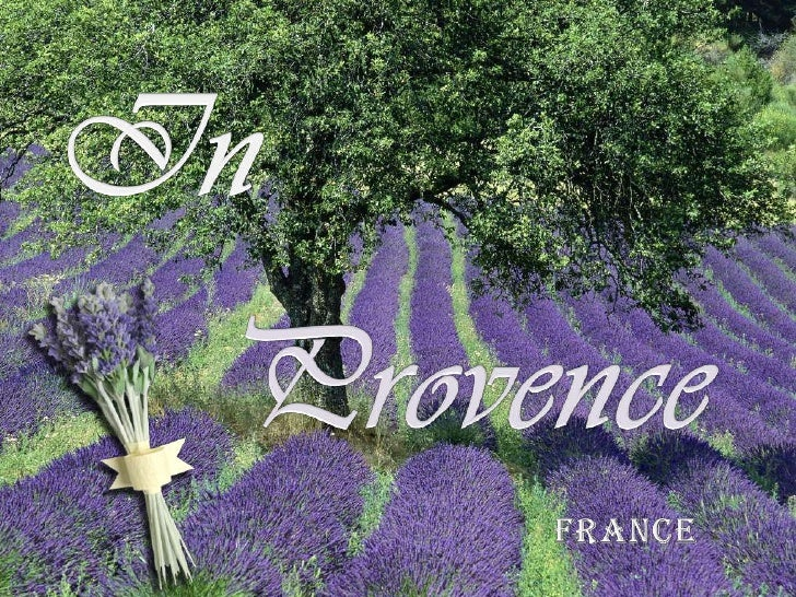 In<br />Provence<br />FRANCE<br />