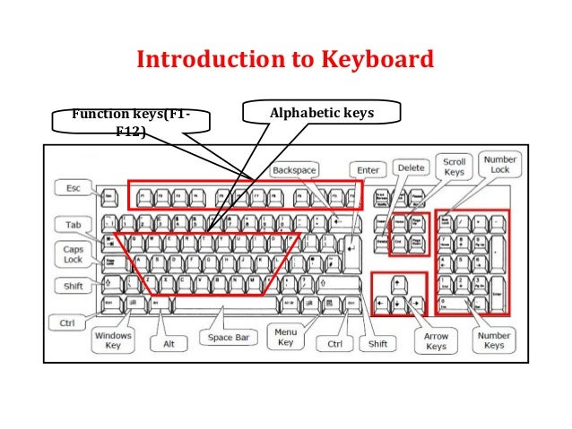 Input devices_(Mouse and Keyboard)