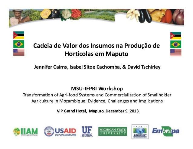 VIPGrandHotel,Maputo,December9,2013 CadeiadeValordosInsumosnaProduçãode HortícolasemMaputo MSU‐IFPRIWork...