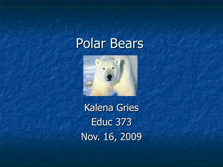 Polar Bears Kalena Gries Educ 373 Nov. 16, 2009