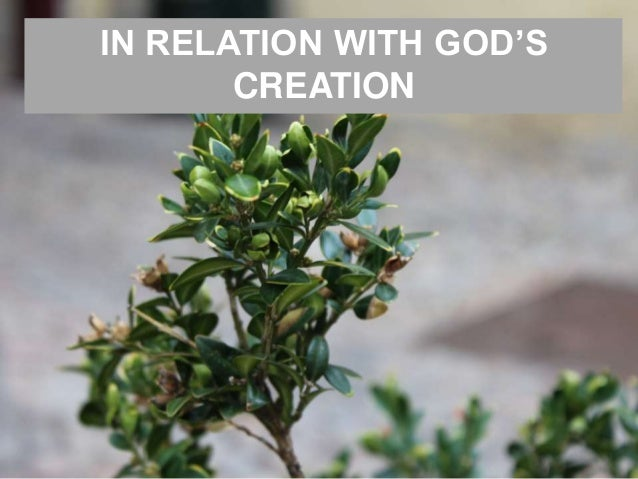 IN RELATION WITH GOD'S CREATION