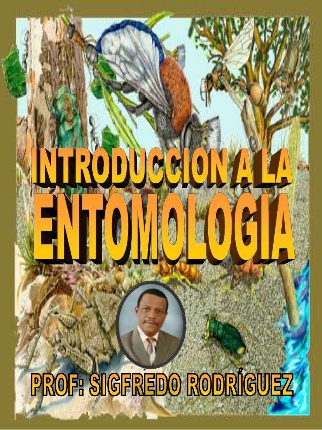 INTRODUCCION El estudio de los insectos esta enmarcado en una rama de ciencia biología llamada ENTOMOLOGIA. Haciendo un an...