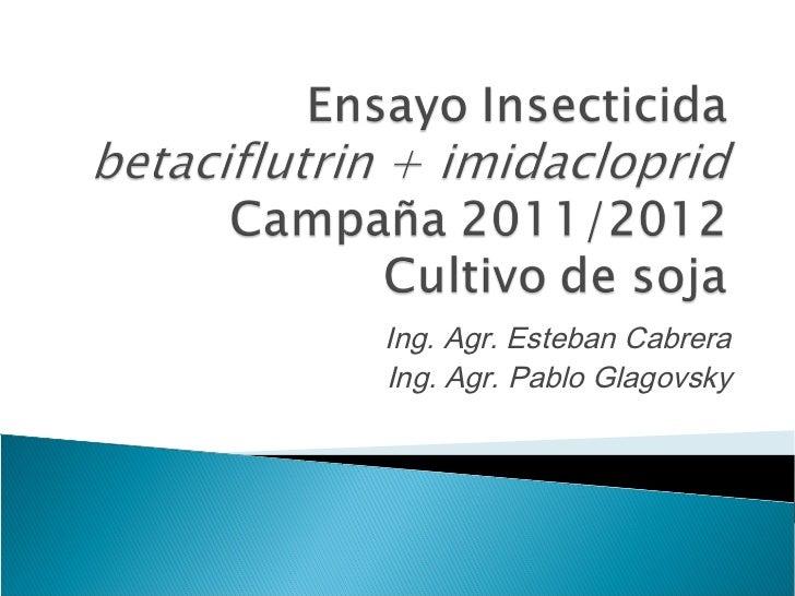 Ing. Agr. Esteban CabreraIng. Agr. Pablo Glagovsky